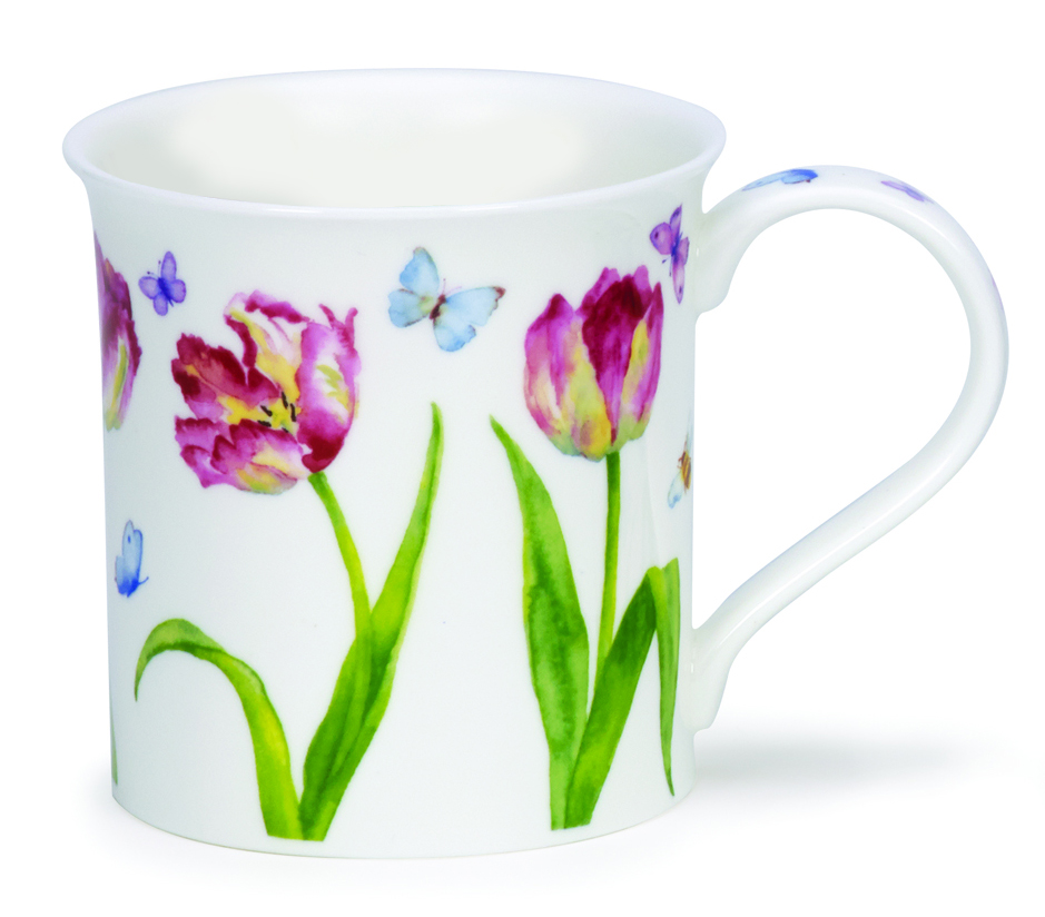 Bute, Beau jardin, Tulips